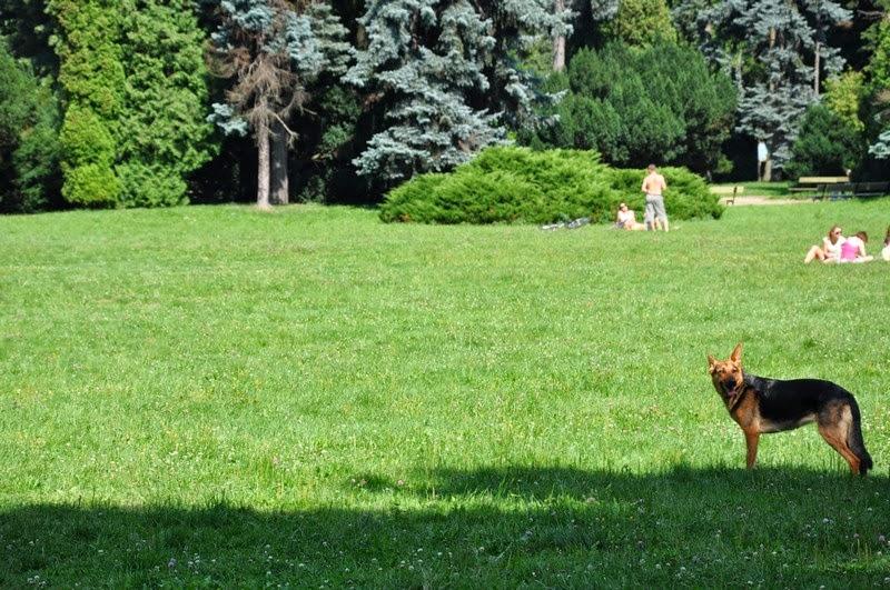 3park-skaryszewski