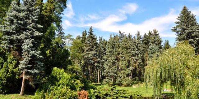 6park-skaryszewski